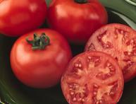 томат ляна 2