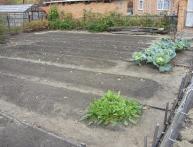 Окучивание растений