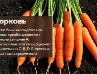 морковь полезные свойства