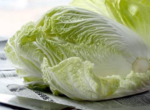 Китайская капуста и ее полезные свойства