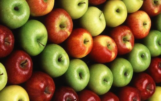Популярные сорта яблонь с фото и их зональность