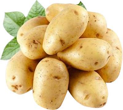 полезный картофель