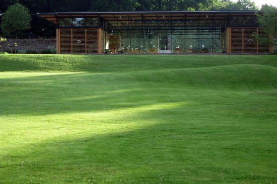 Как посадить газонную траву, чтобы получить хороший газон