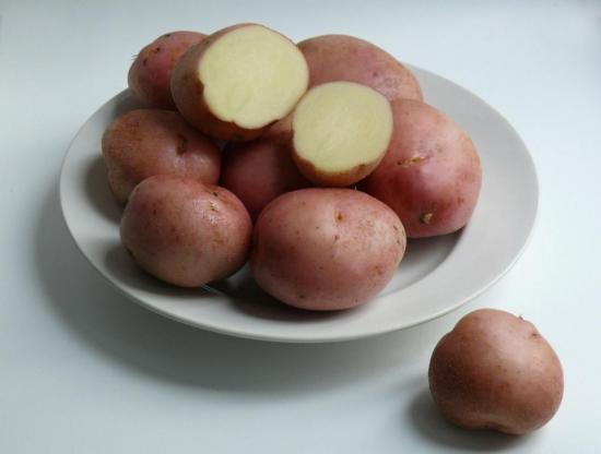 сорт картофеля Ромнано