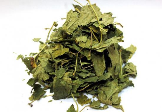 сушить листья смородины