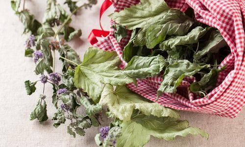 травяные сборы с листьями смородины
