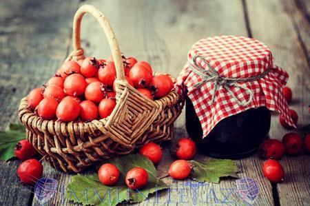 заготовка плодов боярышника