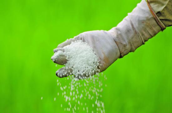 Из чего делают селитру, как используют в растениеводстве, особенности хранения