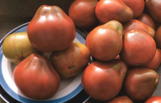 томат японский трюфель красный отзывы