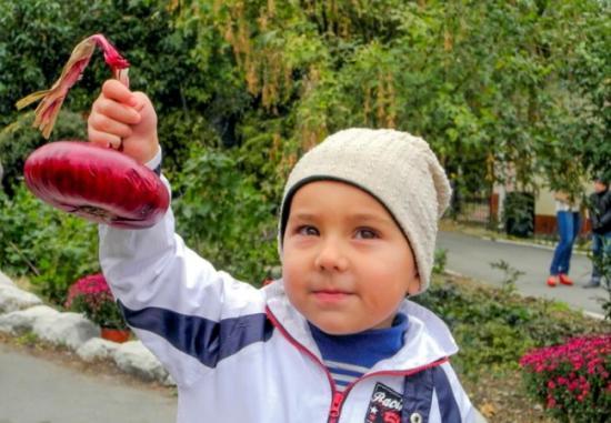 крымский лук