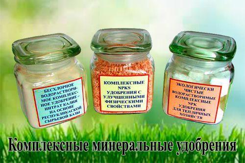 самые лучшие минеральные удобрения