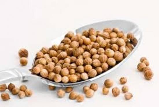 зерна кинзы