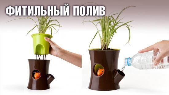 горшки с автополивом для орхидеи