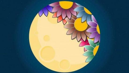 благоприятные дни для пересадки цветов