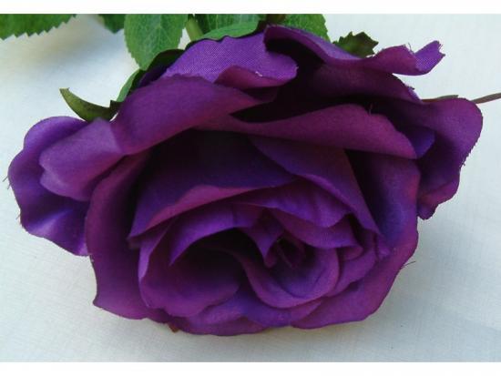 фиолетовые розы - это гибриды