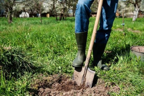 вскопать огород с травой