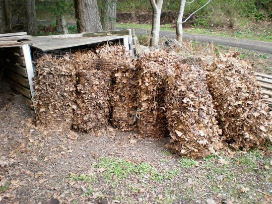 опавшие листья собираем для компостирования