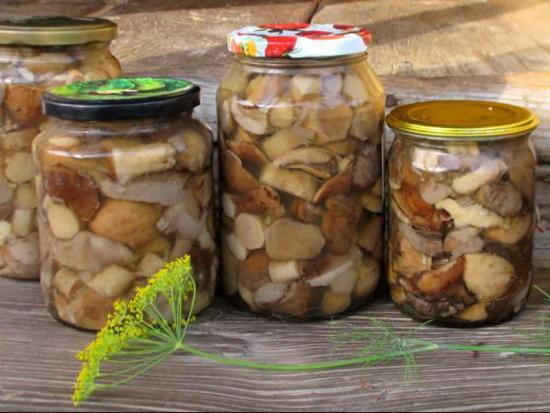 маринованные грибы рецепты