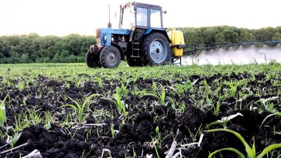 обработка кукурузы гербицидами