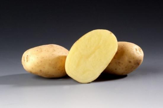 Картофель Сантана: основная характеристика