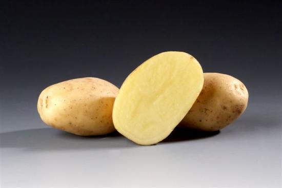 Сорт картофеля Сантана – особенности и разведение