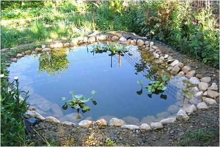 Водоем своими руками на даче (в саду) - как сделать