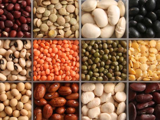 Плоды  детерминантного растения, бобовые