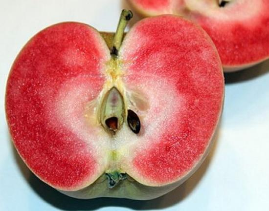 Яблука рожевий перли