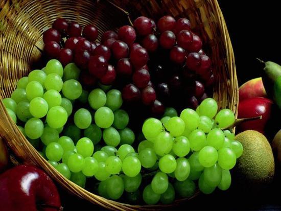 Виноград из косточки
