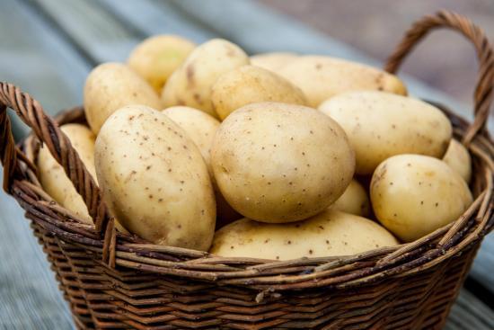 Картофель в бочке