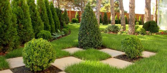 Дизайн в саду