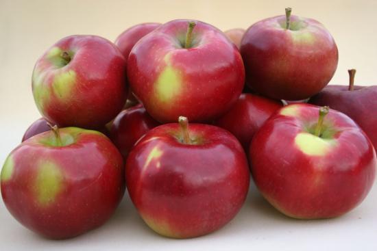 Яблоки энтерпрайз
