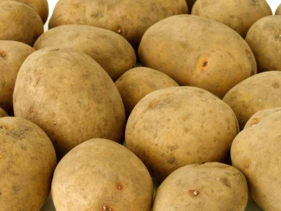 Картошка Скарб