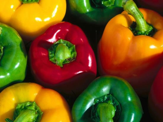 Выращивание болгарского перца, как получить сочные, сладкие плоды