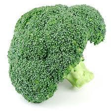 Выращивание капусты брокколи: советы дачникам