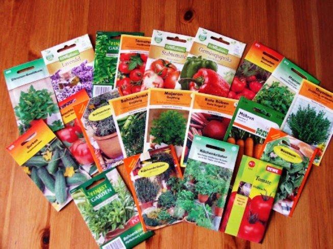 Какие семена покупать, какие культуры можно выращивать на балконе