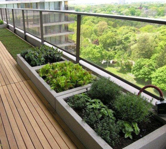 Екости для выращивания овощей на балконе