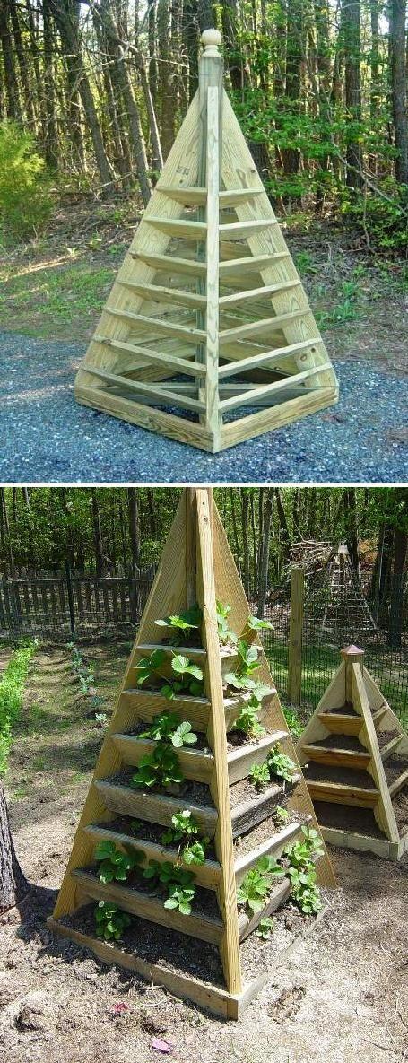 Пирамида для клубники из подручных материалов