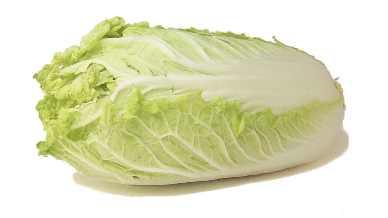 фото китайской капусты