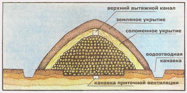 Как сделать картофеле хранилище