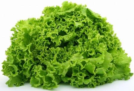 Картинки по запросу салат растение