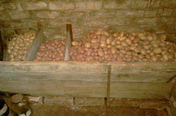 Как сделать закром для картошки 187