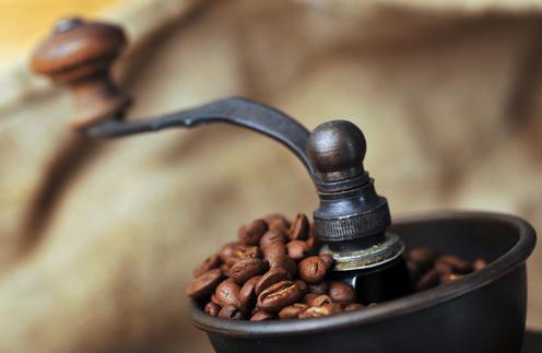 Где выращивают кофе и можно ли это сделать в наших условиях