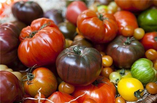 томаты Углерод отзывы