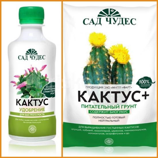 удобрения и грунт для кактусов