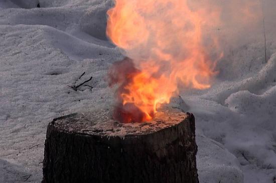 выжигание пня селитрой
