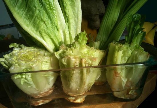 салат из корней