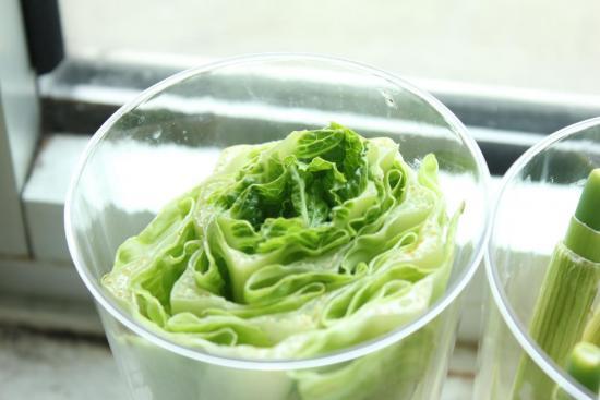 выращиваем салат из растений, купленых в магазине