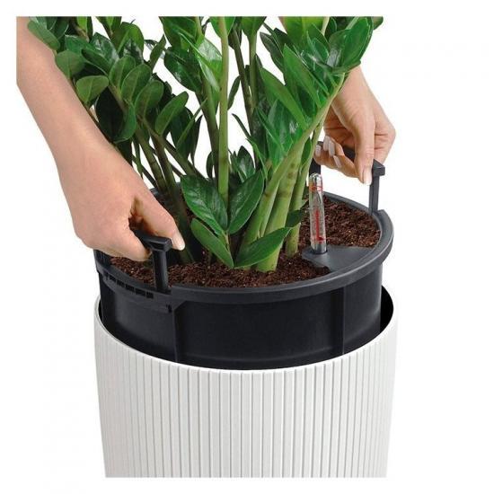 пересадка растения в горшок с автополивом