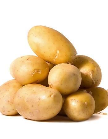 Обязательно нужно знать, как правильно сажать картофель
